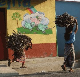 A woman and child carrying firewood